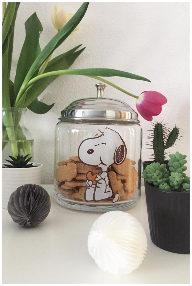 Snoopykeksglas-650