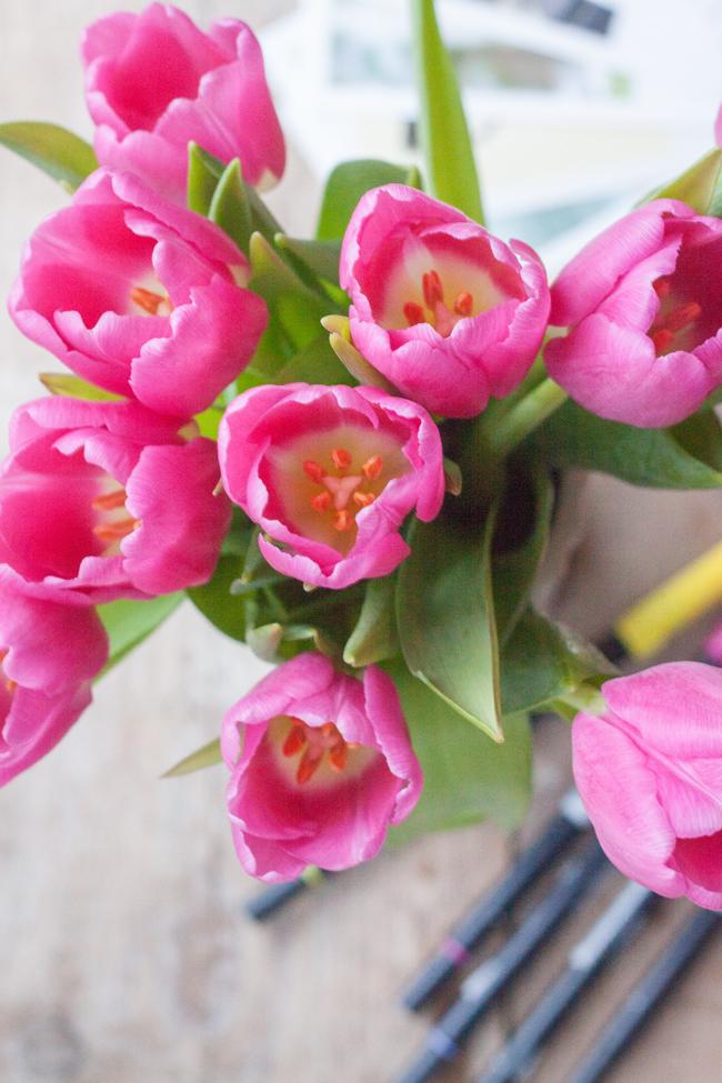 Tulpen-650px