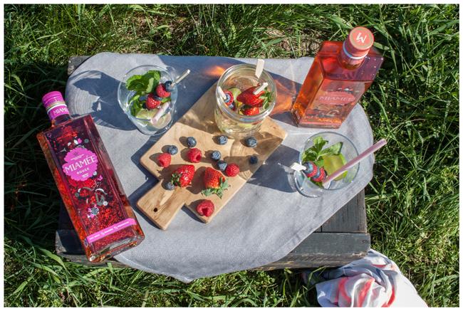 Miamee-Picknick von oben