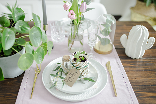 Tischdekoration Plantlover Babypilea