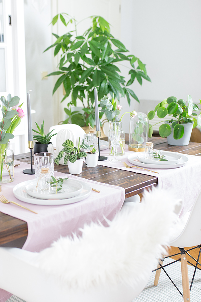 Schenkmirblumen Tischdekoration Pflanzen Hafenmaedchen