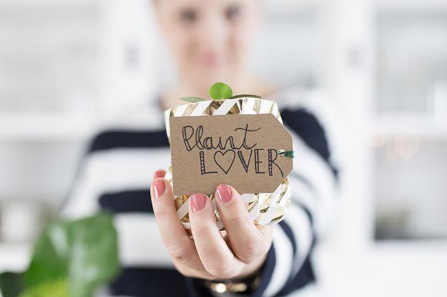 Schenkt mir Blumen - Lettering Plantlover