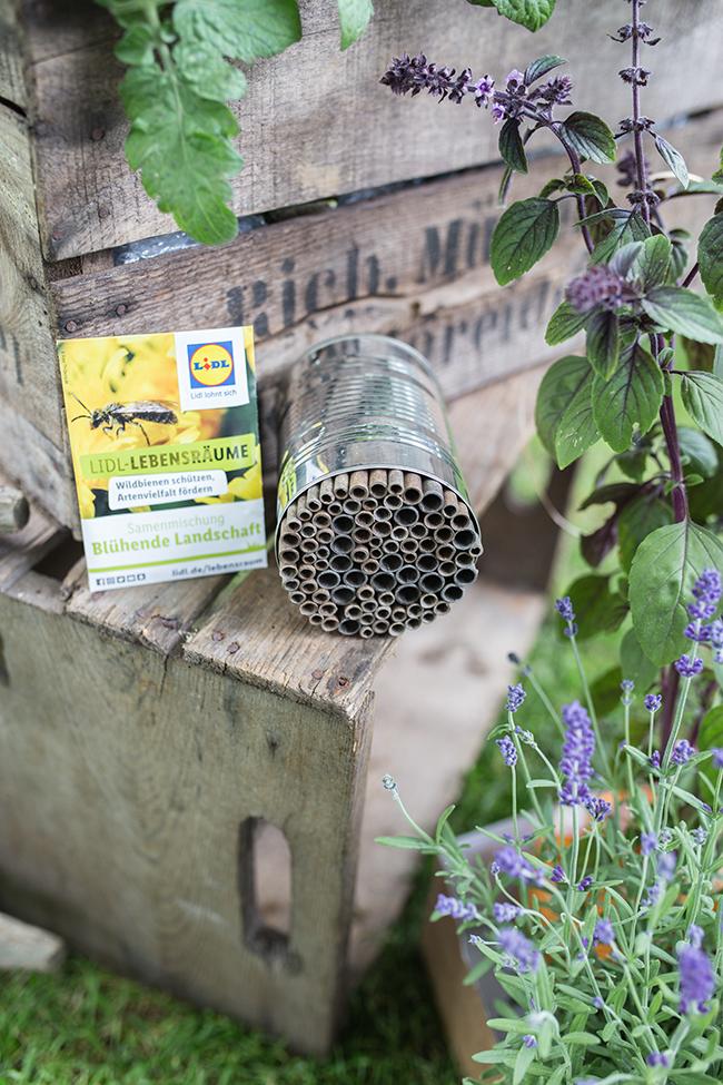DIY - Insektenhotel in einer Dose Lidl Lebensräume