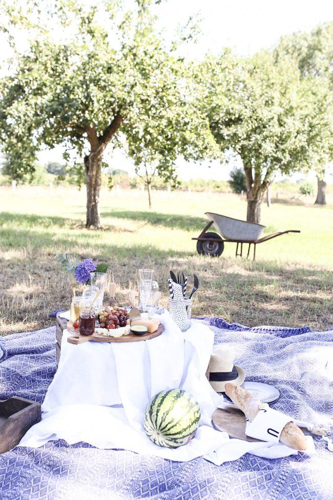 Picknicklocation Apfelgarten mit Crémant von der Loire