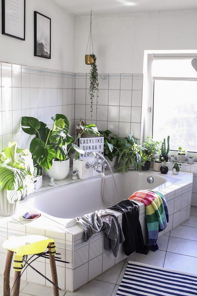 Zimmerpflanzen - Ein Badezimmer voller Grünpflanzen