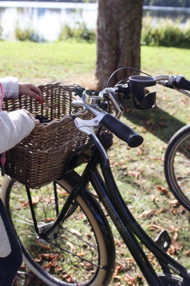 Gazelle Hollandrad Fahrradkorb