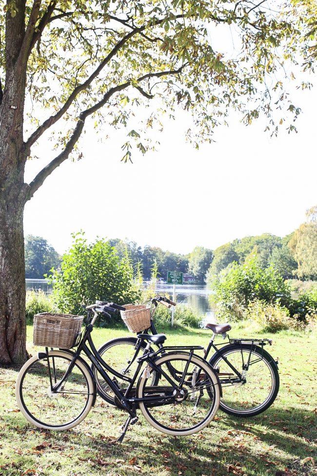 Kasanien sammeln am See in Barmstedt Fahrradtour