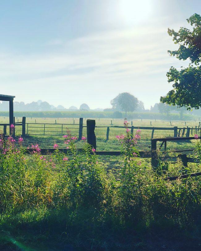 Morgendlicher Spaziergang auf dem Land mit Sonnenaufgang