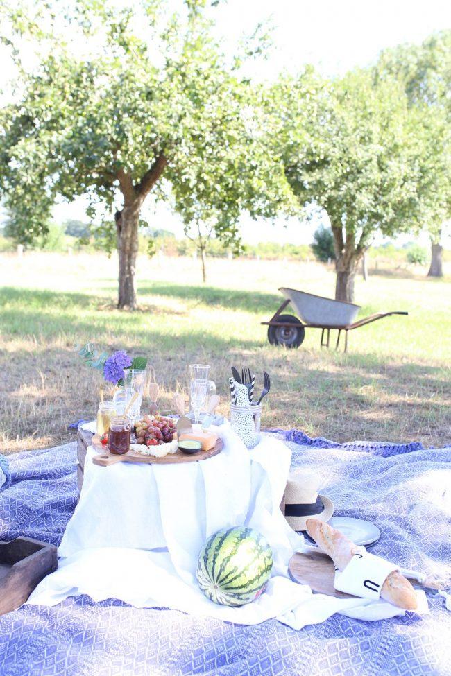 Picknick im eigenem Garten
