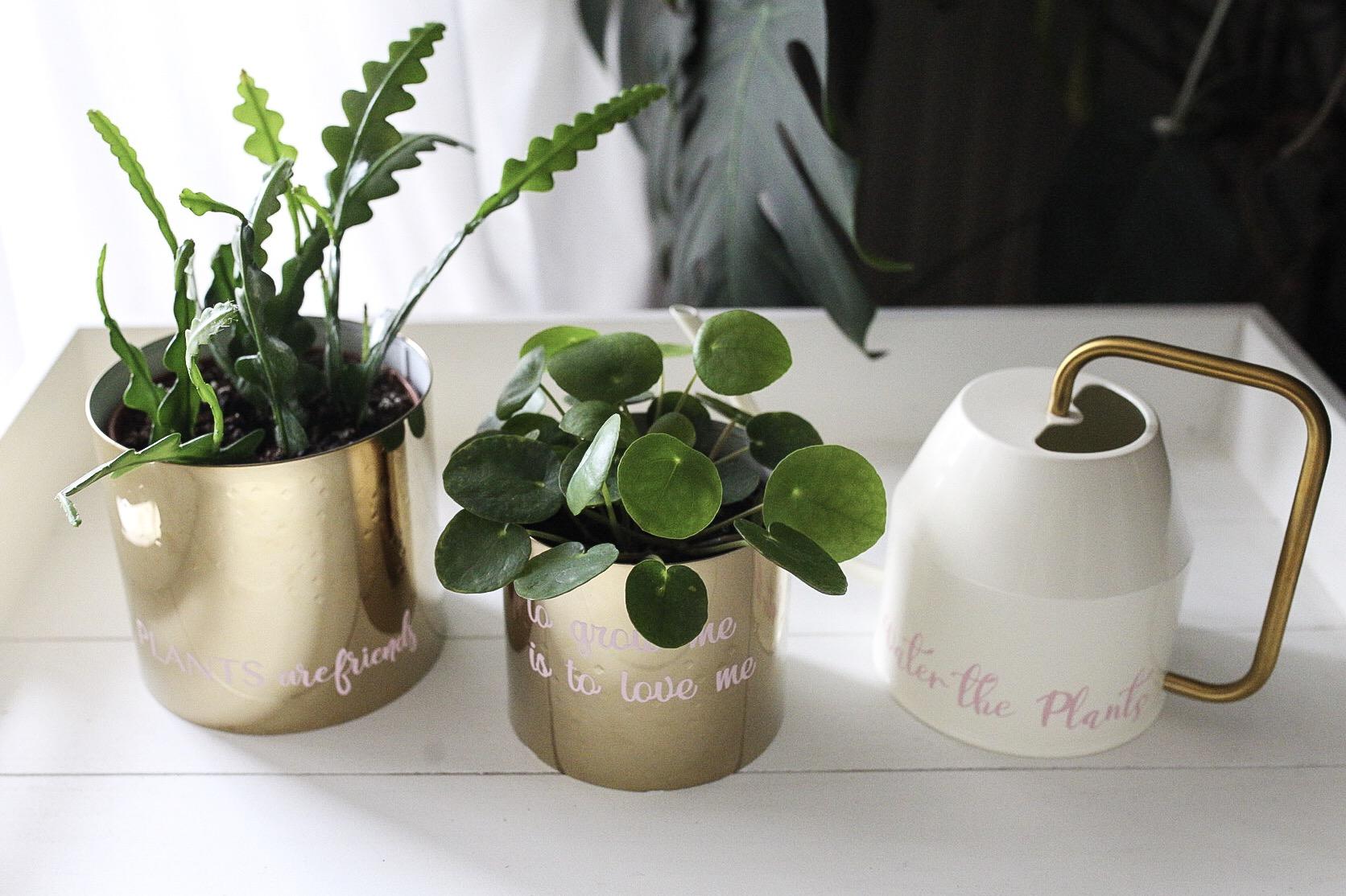 PLOTTER-DIY Goldene Blumentöpfe mit Schriftzug Plants ARE FRIENDS