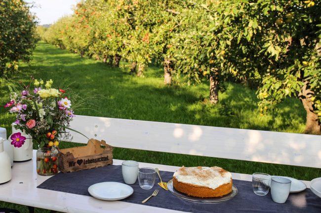 Apfel Schmand Torte im Alte Land